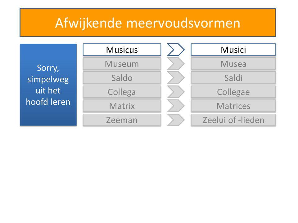Afwijkende meervoudsvormen Sorry, simpelweg uit het hoofd leren Saldo Saldi Collega Collegae Matrix Matrices Zeeman Zeelui of -lieden Musicus Musici Museum Musea