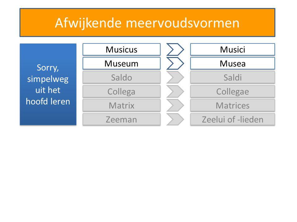 Afwijkende meervoudsvormen Sorry, simpelweg uit het hoofd leren Saldo Saldi Collega Collegae Matrix Matrices Zeeman Zeelui of -lieden Musicus Musici M