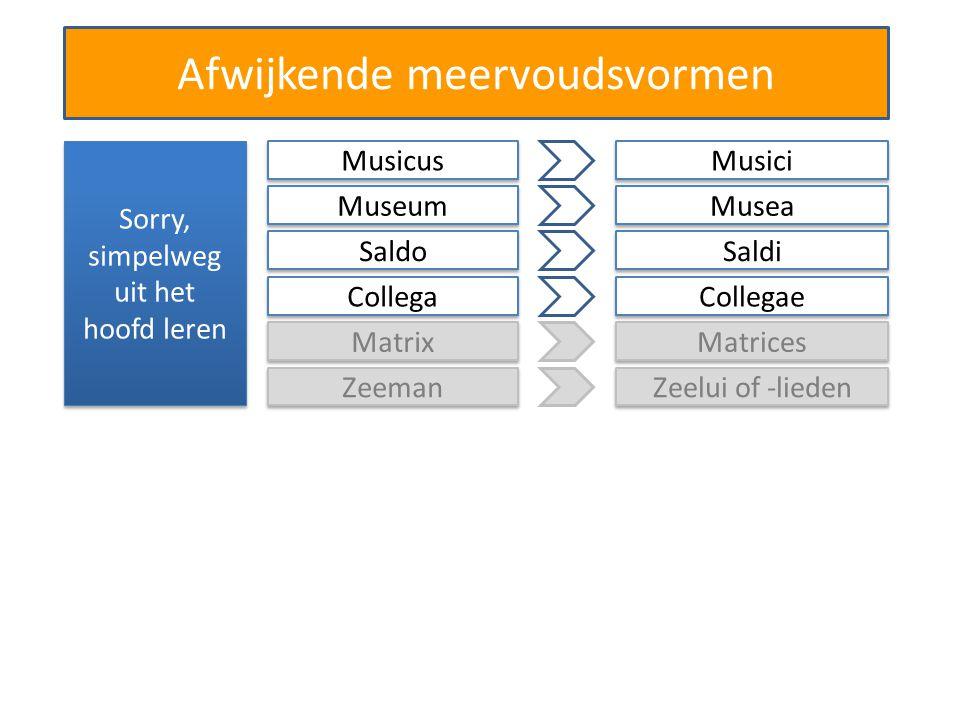 Afwijkende meervoudsvormen Sorry, simpelweg uit het hoofd leren Matrix Matrices Zeeman Zeelui of -lieden Musicus Musici Museum Musea Saldo Saldi Collega Collegae