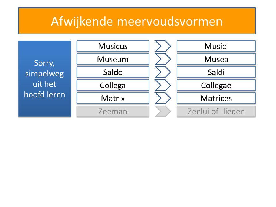 Afwijkende meervoudsvormen Sorry, simpelweg uit het hoofd leren Musicus Musici Museum Musea Saldo Saldi Collega Collegae Matrix Matrices Zeeman Zeelui