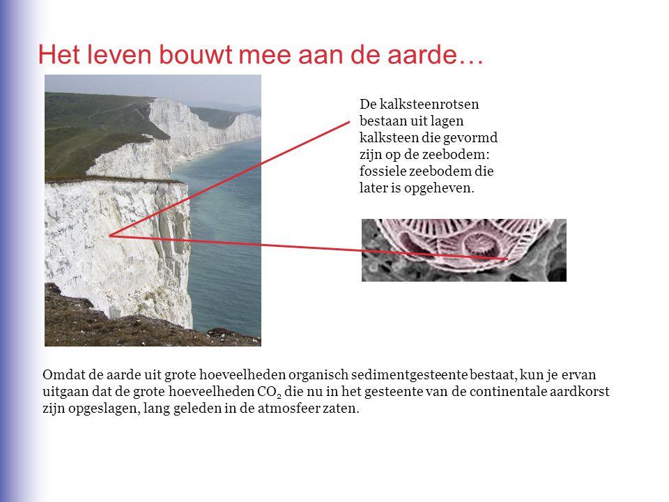 Omdat de aarde uit grote hoeveelheden organisch sedimentgesteente bestaat, kun je ervan uitgaan dat de grote hoeveelheden CO 2 die nu in het gesteente