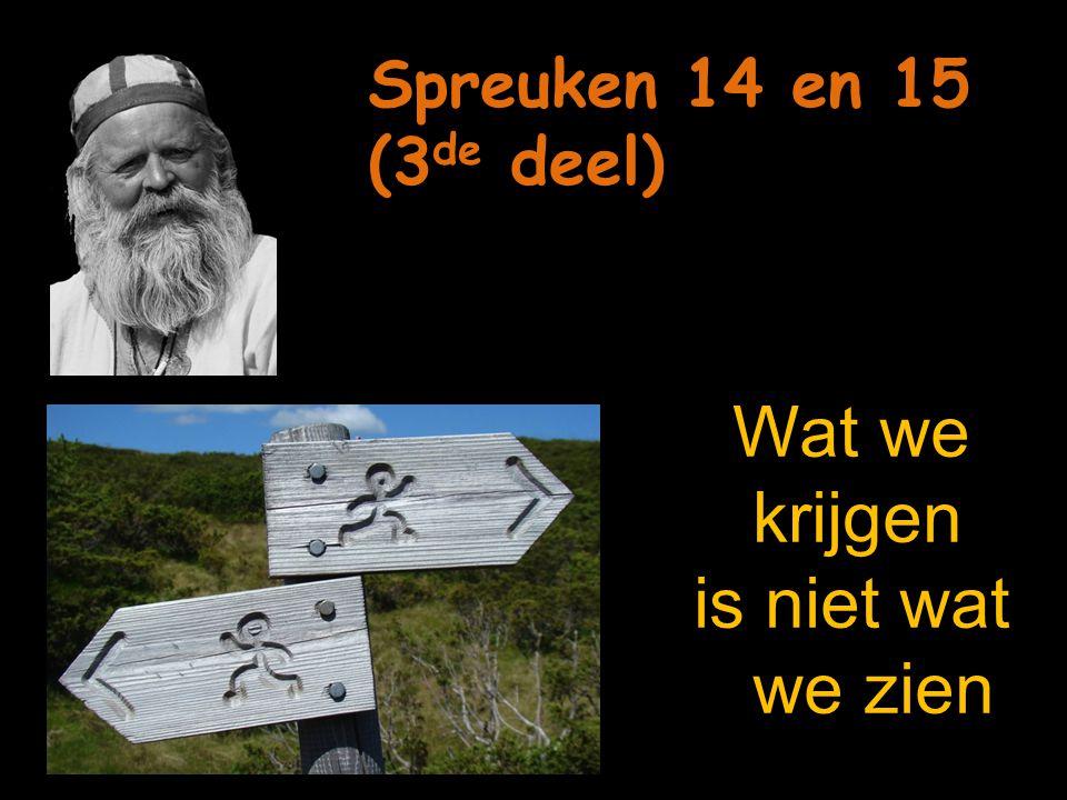 8 Door zijn wijsheid weet de wijze welke weg hij moet gaan, 8 Door zijn wijsheid weet de wijze welke weg hij moet gaan, dwazen bedriegen zichzelf met hun dwaasheid.