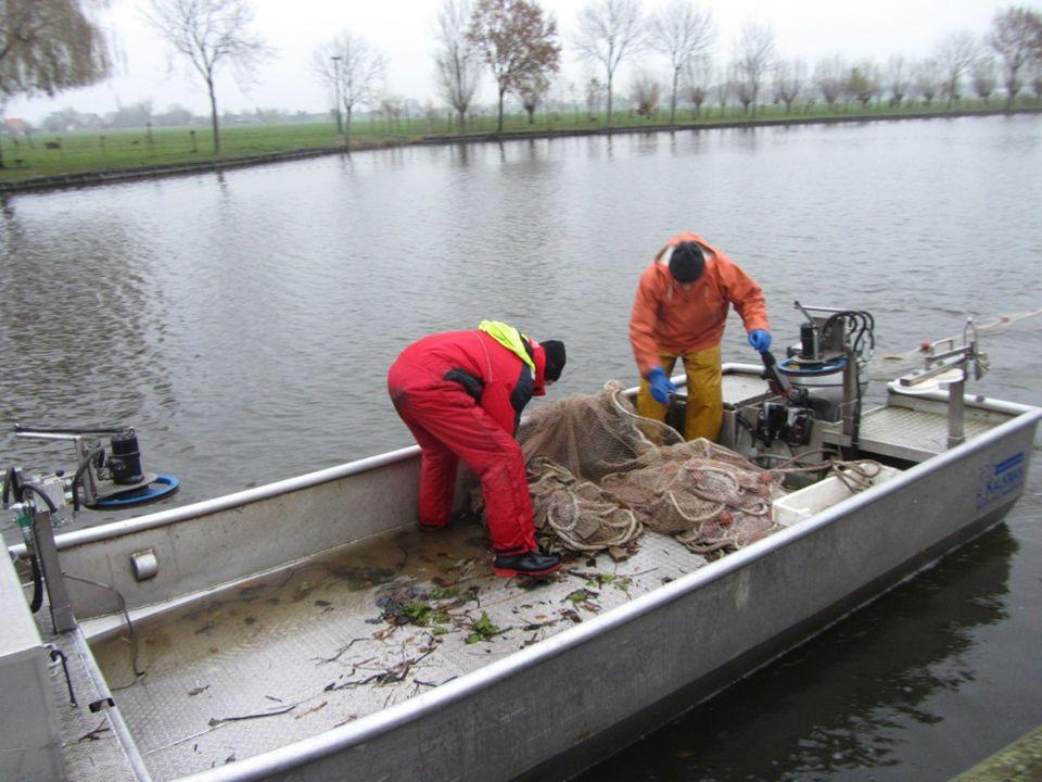 Probleemstelling: Slechte vangsten Slechte conditie vis/ visterfte Doel project: De draagkracht van het water kunstmatig te verhogen met als doel de hoeveelheid vis in een water langdurig op een hoger peil te krijgen.