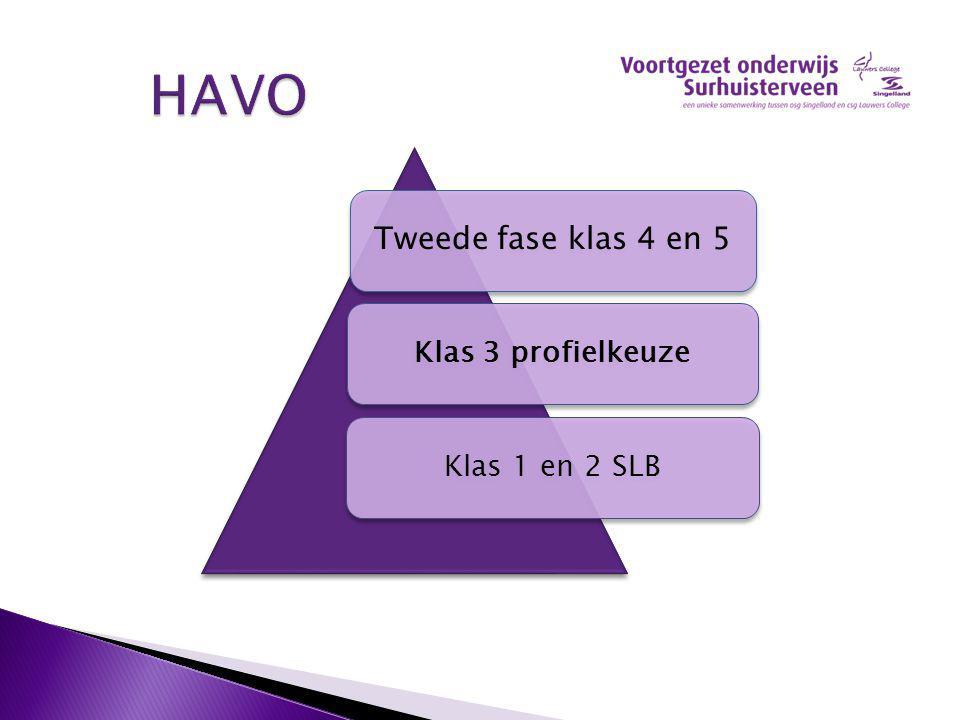 HAVO HAVO Tweede fase klas 4 en 5 Klas 3 profielkeuzeKlas 1 en 2 SLB