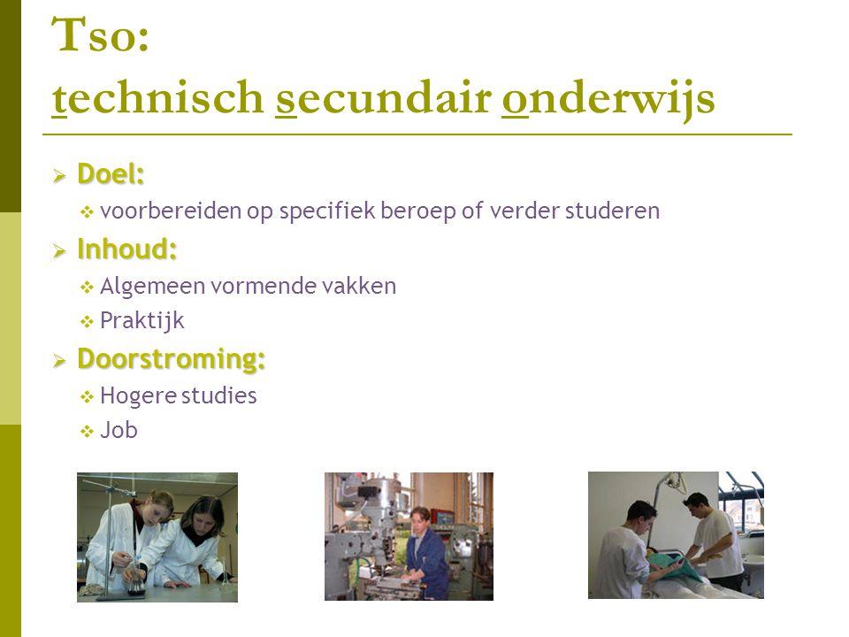 TSO: Technisch secundair onderwijs  Onderscheid tussen:  Theoretisch technische richtingen: b.v.