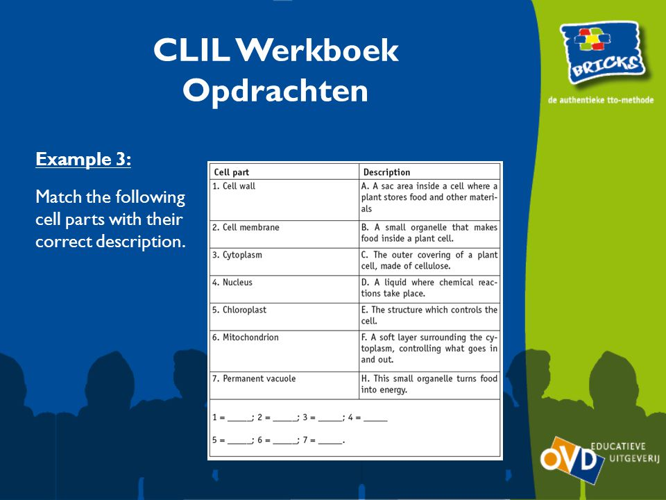 Example 3: Match the following cell parts with their correct description. CLIL Werkboek Opdrachten