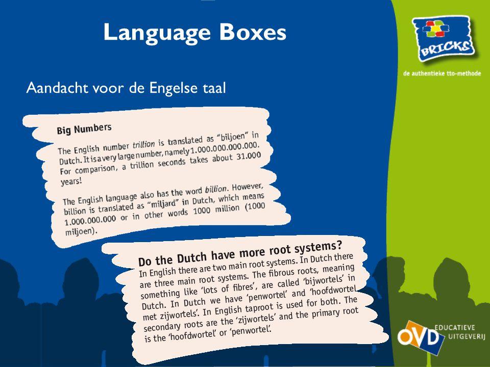 Language Boxes Aandacht voor de Engelse taal