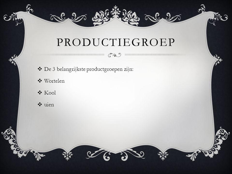 PRODUCTIEGROEP  De 3 belangrijkste productgroepen zijn:  Wortelen  Kool  uien