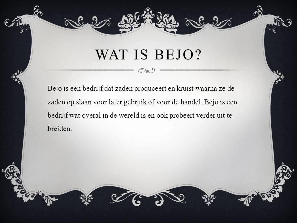 WAT IS BEJO? Bejo is een bedrijf dat zaden produceert en kruist waarna ze de zaden op slaan voor later gebruik of voor de handel. Bejo is een bedrijf