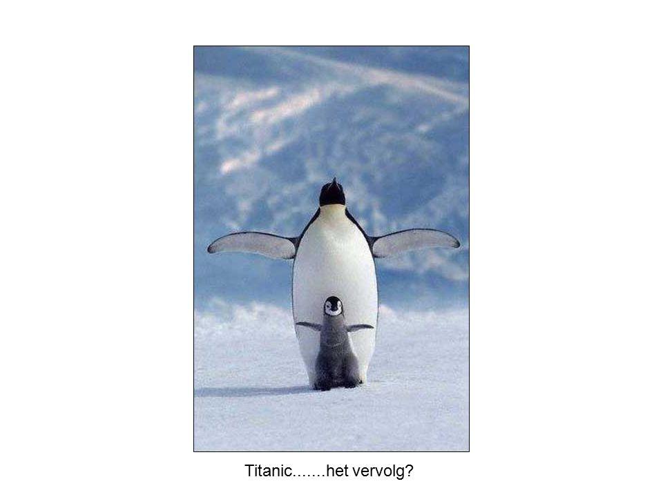 Titanic.......het vervolg?