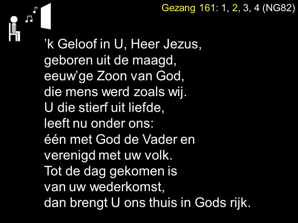 Gezang 161: 1, 2, 3, 4 (NG82) 'k Geloof in U, Heer Jezus, geboren uit de maagd, eeuw'ge Zoon van God, die mens werd zoals wij. U die stierf uit liefde