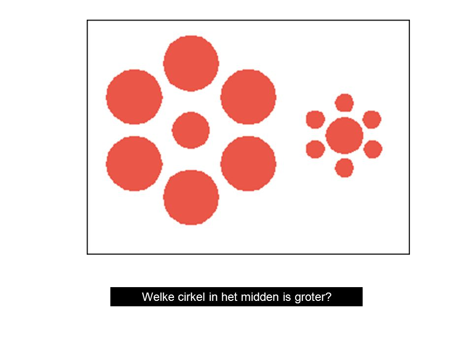 Which circle in the middle is bigger? Welke cirkel in het midden is groter?