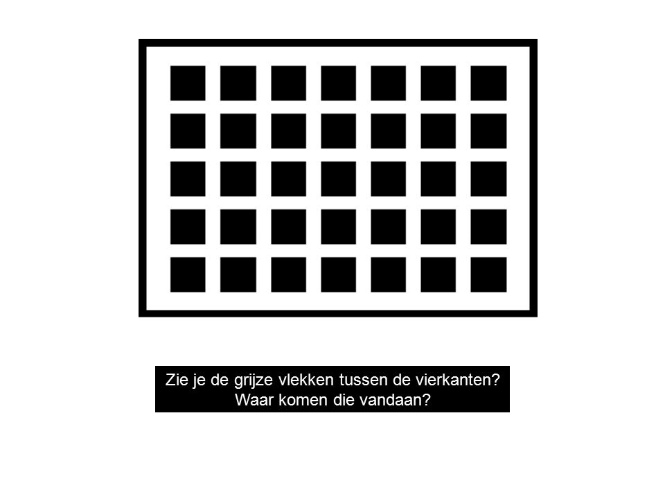 Do you see gray areas in between the squares.Now where did they come from.