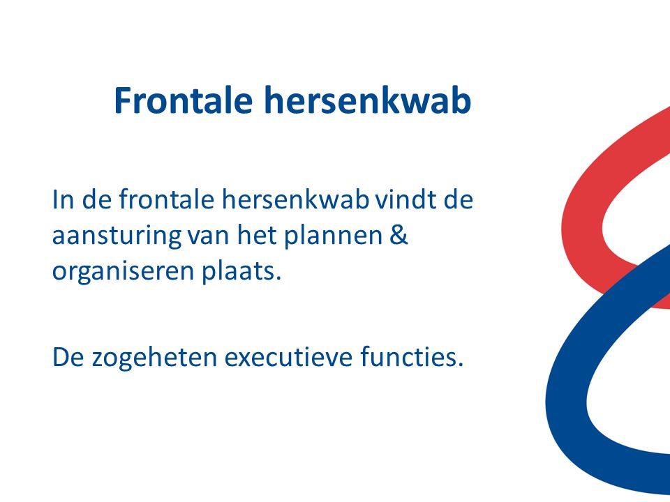 Frontale hersenkwab In de frontale hersenkwab vindt de aansturing van het plannen & organiseren plaats. De zogeheten executieve functies.