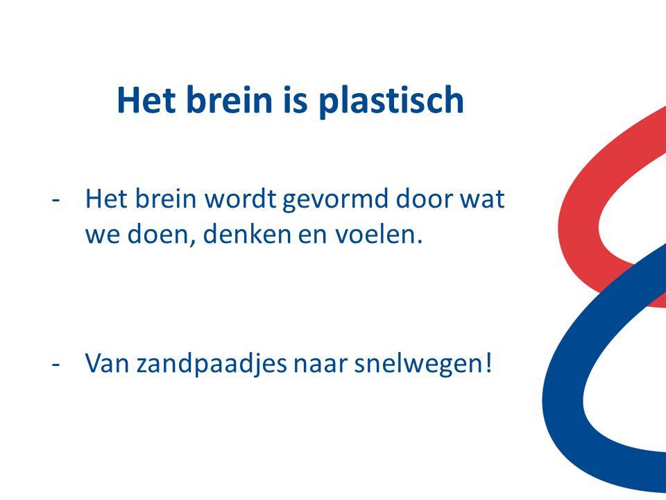 Het brein is plastisch -Het brein wordt gevormd door wat we doen, denken en voelen. -Van zandpaadjes naar snelwegen!