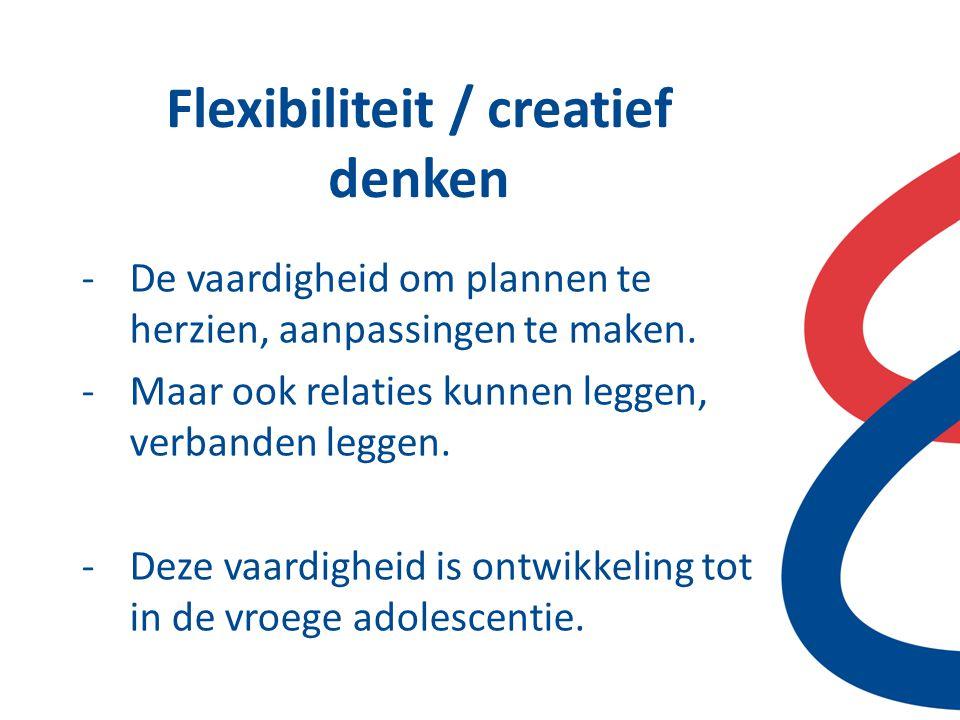 Flexibiliteit / creatief denken -De vaardigheid om plannen te herzien, aanpassingen te maken. -Maar ook relaties kunnen leggen, verbanden leggen. -Dez