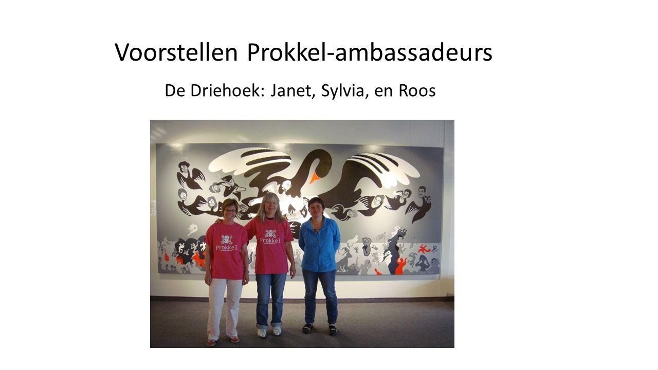 Voorstellen Prokkel-ambassadeurs De Driehoek: Janet, Sylvia, en Roos