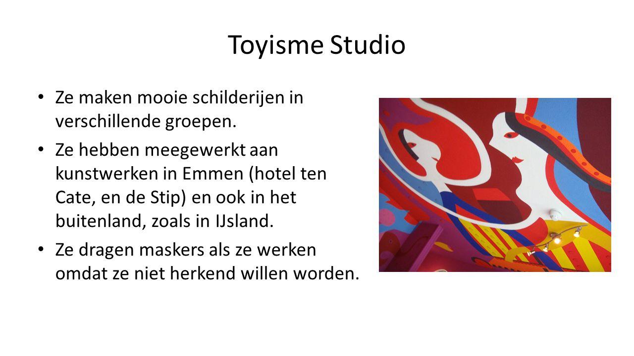 Toyisme Studio Ze maken mooie schilderijen in verschillende groepen. Ze hebben meegewerkt aan kunstwerken in Emmen (hotel ten Cate, en de Stip) en ook