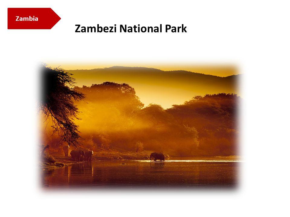 Zambia Zambezi National Park