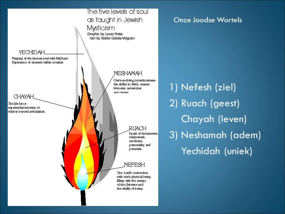 1) Nefesh (ziel) 2) Ruach (geest) Chayah (leven) 3) Neshamah (adem) Yechidah (uniek)