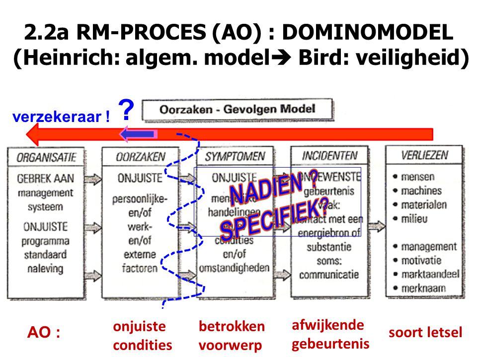 2.2a RM-PROCES (AO) : DOMINOMODEL (Heinrich: algem.