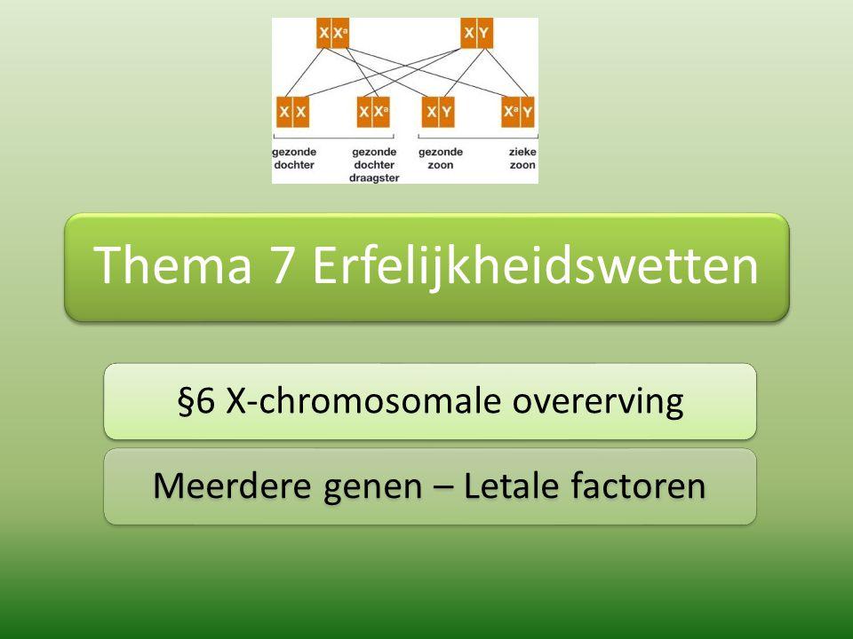 Geslachtschromosomen Autosomen: alle chromosomen minus de geslachtschromosomen Geslachtschromosomen: X en Y Op X chromosoom liggen gewoon genen met informatie over eigenschappen, net als op alle autosomen Op Y chromosoom bevat vrijwel geen genen