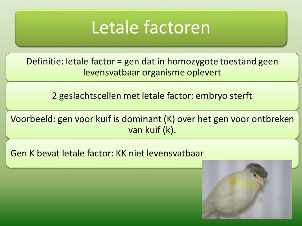 Letale factoren Definitie: letale factor = gen dat in homozygote toestand geen levensvatbaar organisme oplevert 2 geslachtscellen met letale factor: e
