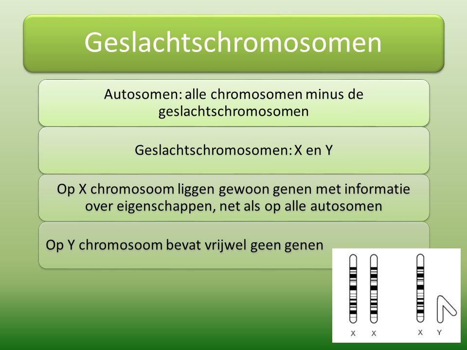 Geslachtschromosomen Autosomen: alle chromosomen minus de geslachtschromosomen Geslachtschromosomen: X en Y Op X chromosoom liggen gewoon genen met in