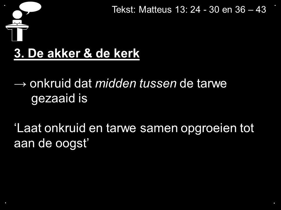.... Tekst: Matteus 13: 24 - 30 en 36 – 43 3. De akker & de kerk → onkruid dat midden tussen de tarwe gezaaid is 'Laat onkruid en tarwe samen opgroeie
