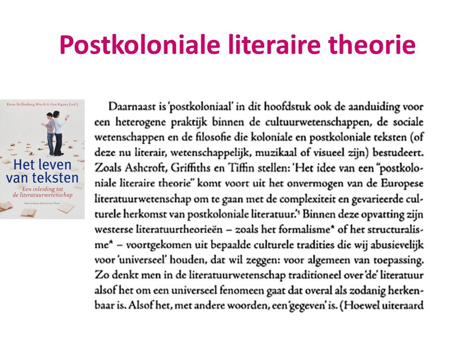 Postkoloniale literaire theorie