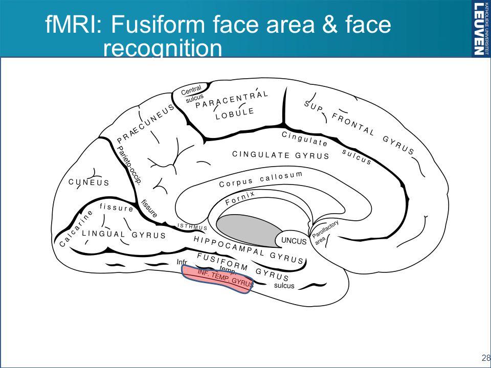 fMRI: Fusiform face area & face recognition 28