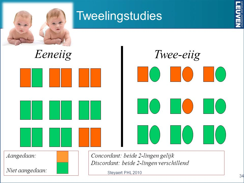 Tweelingstudies 34 Eeneiig Twee-eiig Concordant: beide 2-lingen gelijk Discordant: beide 2-lingen verschillend Aangedaan: Niet aangedaan: Steyaert PHL