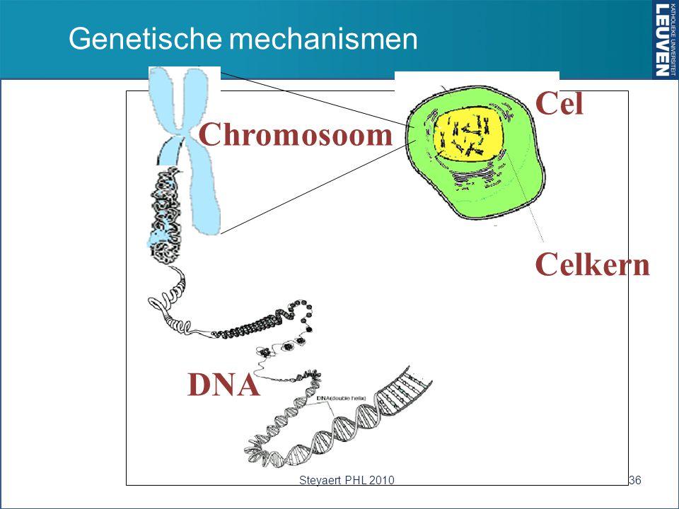 Cel Chromosoom DNA Celkern Genetische mechanismen Steyaert PHL 201036