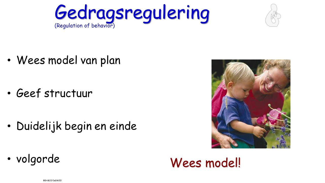 Gedragsregulering Gedragsregulering (Regulation of behavior) Wees model van plan Geef structuur Duidelijk begin en einde volgorde Wees model! ©StiBCO/