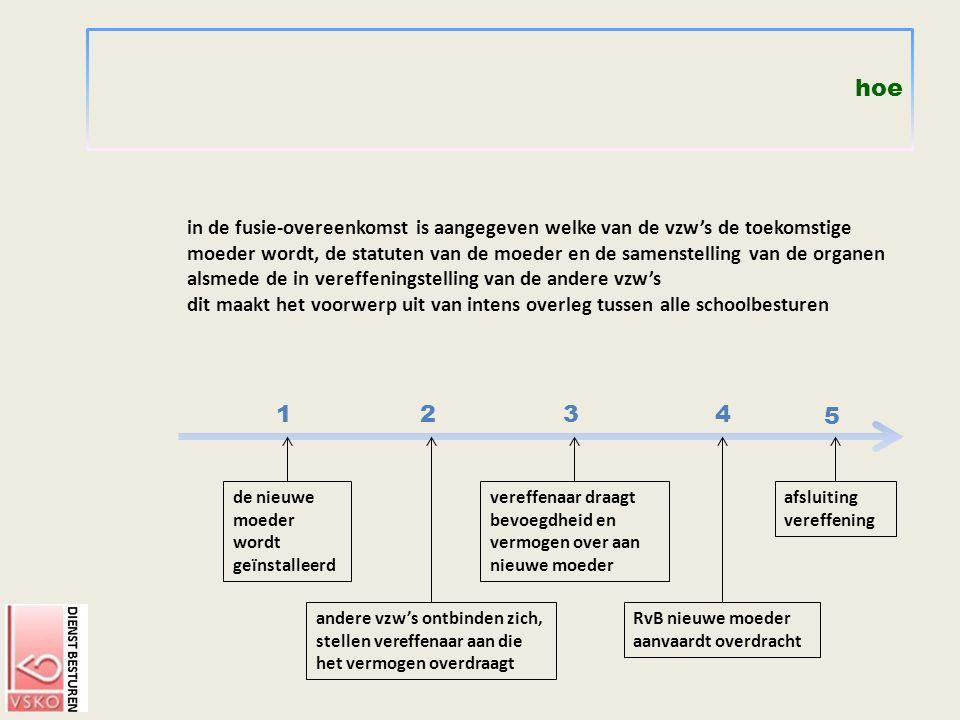 hoe in de fusie-overeenkomst is aangegeven welke van de vzw's de toekomstige moeder wordt, de statuten van de moeder en de samenstelling van de organe