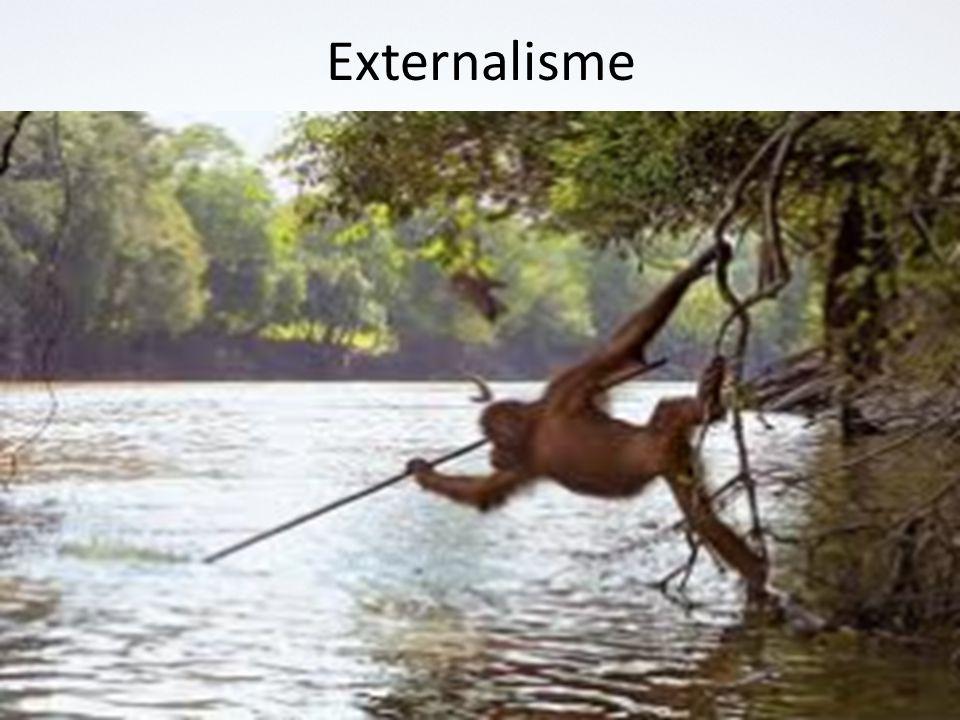 Externalisme
