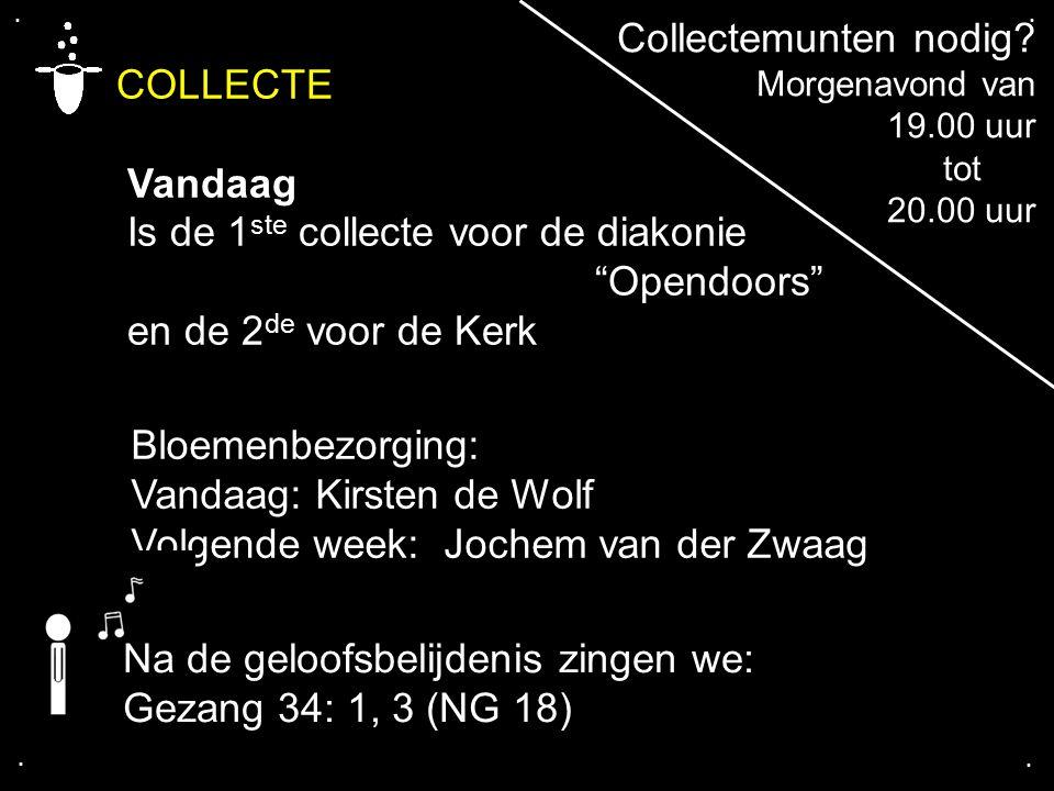 """.... COLLECTE Vandaag Is de 1 ste collecte voor de diakonie """"Opendoors"""" en de 2 de voor de Kerk Bloemenbezorging: Vandaag: Kirsten de Wolf Volgende we"""