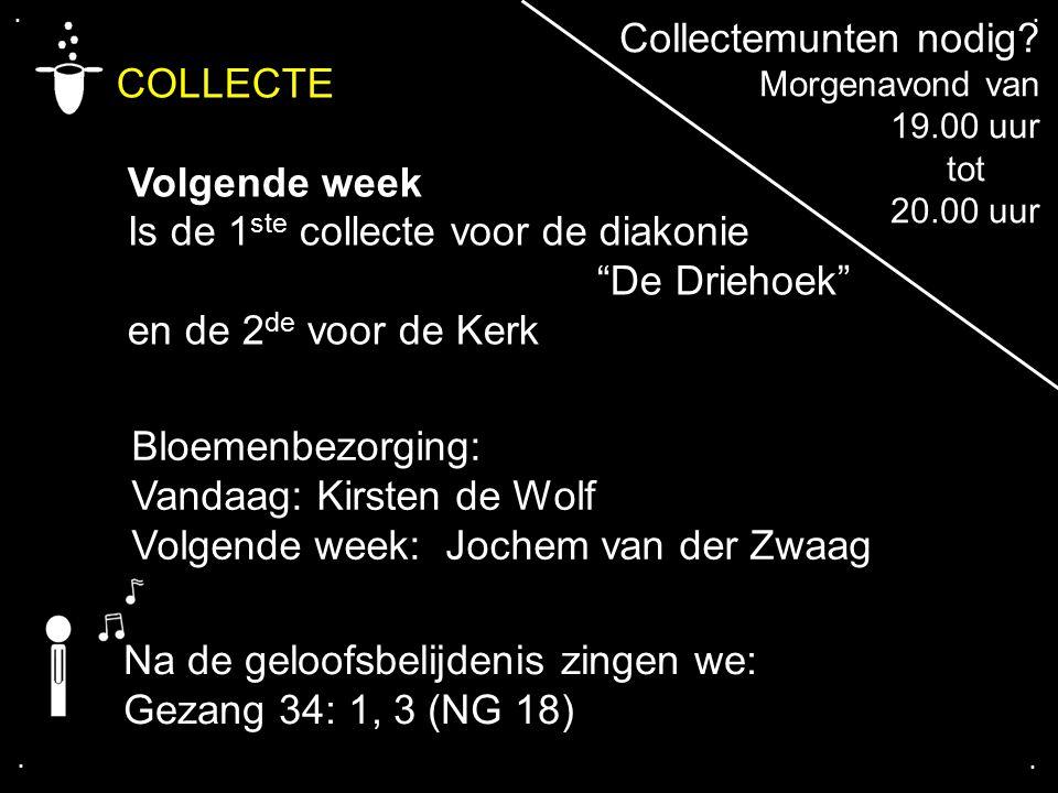 """.... COLLECTE Volgende week Is de 1 ste collecte voor de diakonie """"De Driehoek"""" en de 2 de voor de Kerk Bloemenbezorging: Vandaag: Kirsten de Wolf Vol"""