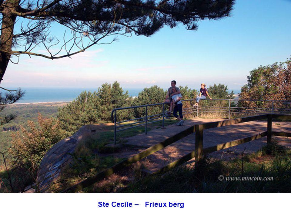 Ste Cecile – zicht op de Frieux Berg