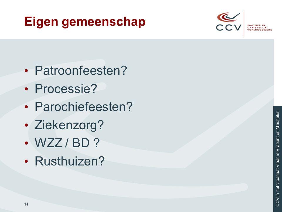 CCV in het vicariaat Vlaams-Brabant en Mechelen Eigen gemeenschap Patroonfeesten? Processie? Parochiefeesten? Ziekenzorg? WZZ / BD ? Rusthuizen? 14