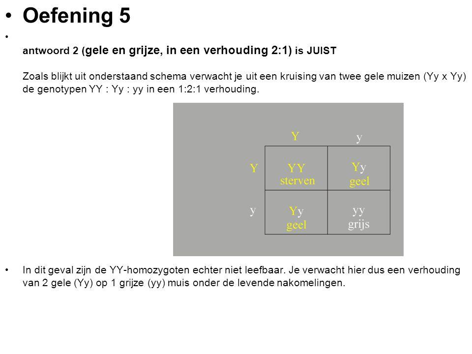Oefening 5 antwoord 2 ( gele en grijze, in een verhouding 2:1) is JUIST Zoals blijkt uit onderstaand schema verwacht je uit een kruising van twee gele