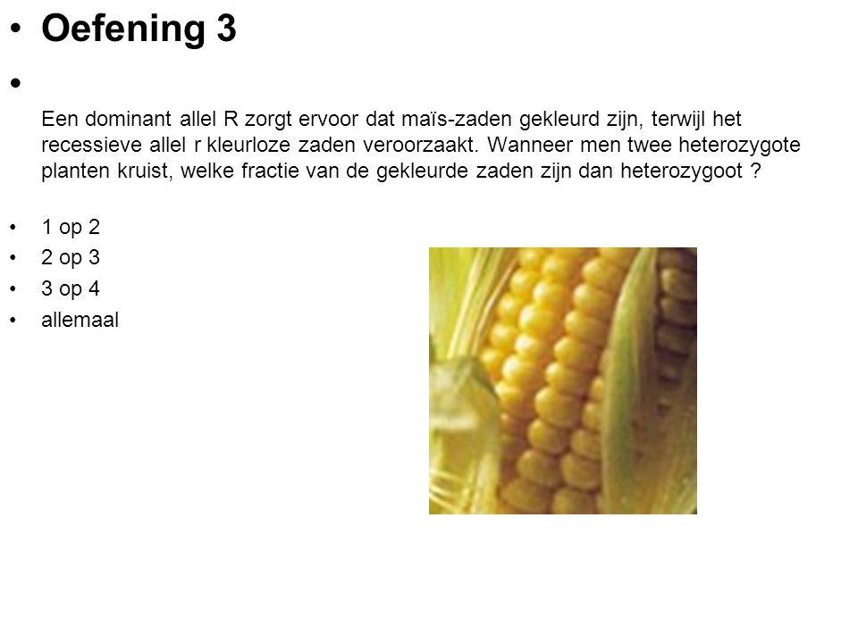 Oefening 3 Een dominant allel R zorgt ervoor dat maïs-zaden gekleurd zijn, terwijl het recessieve allel r kleurloze zaden veroorzaakt. Wanneer men twe