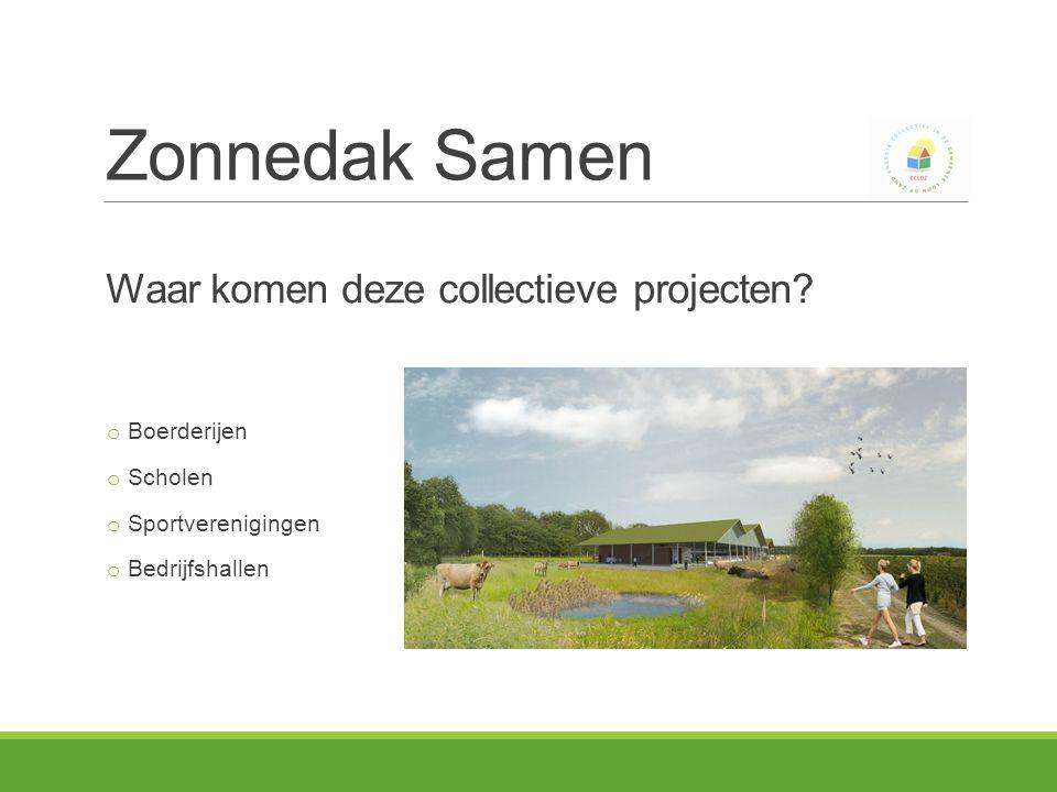 Waar komen deze collectieve projecten.