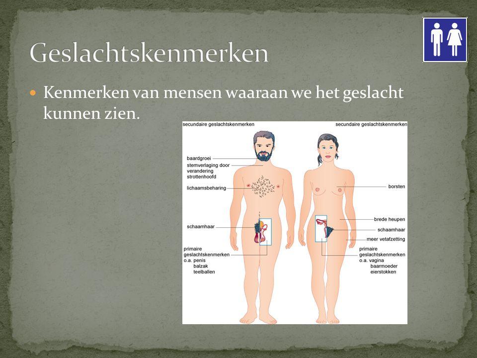 Kenmerken van mensen waaraan we het geslacht kunnen zien.