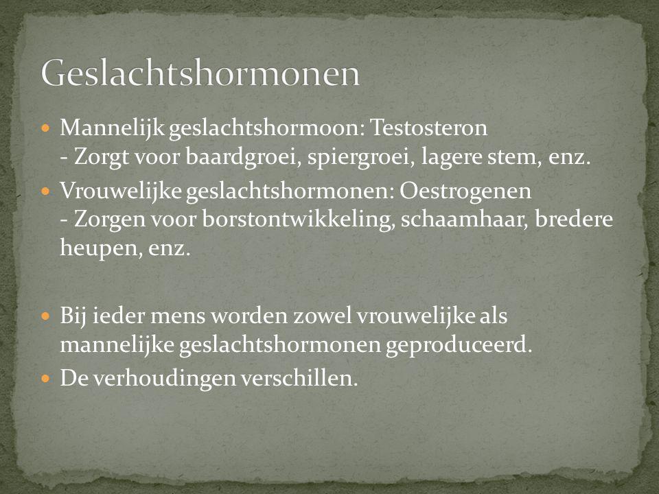 Mannelijk geslachtshormoon: Testosteron - Zorgt voor baardgroei, spiergroei, lagere stem, enz. Vrouwelijke geslachtshormonen: Oestrogenen - Zorgen voo