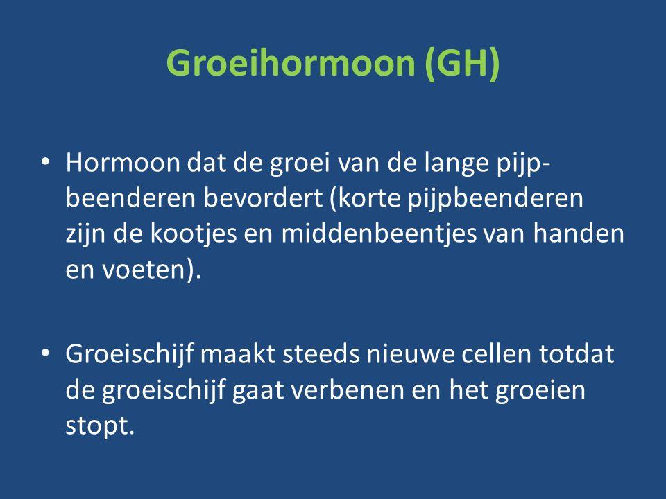 Groeihormoon (GH) Hormoon dat de groei van de lange pijp- beenderen bevordert (korte pijpbeenderen zijn de kootjes en middenbeentjes van handen en voeten).