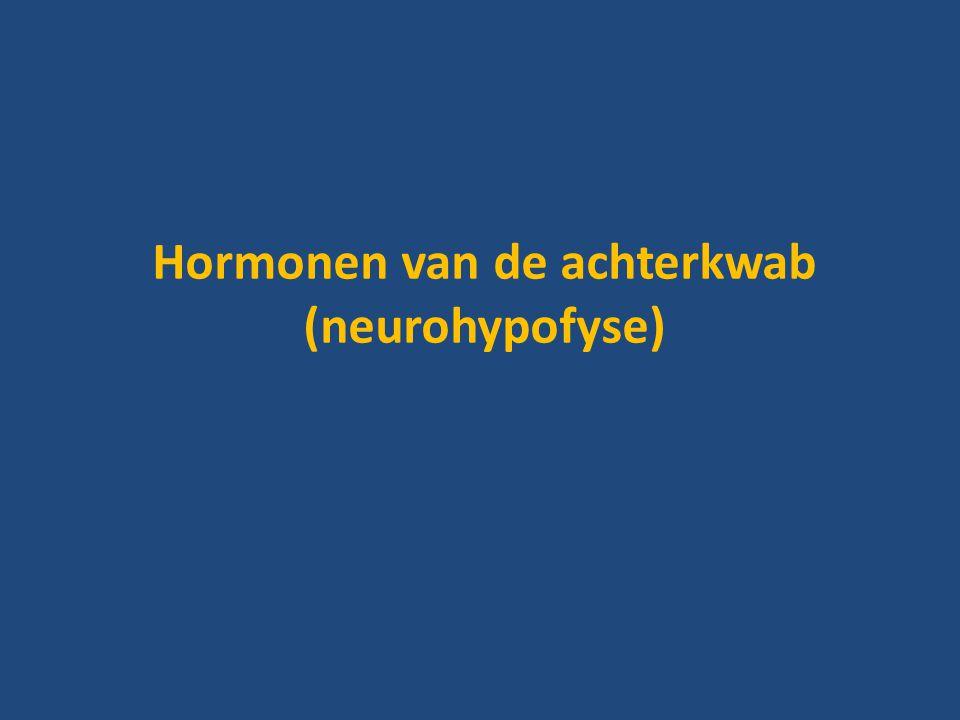 Hormonen van de achterkwab (neurohypofyse)