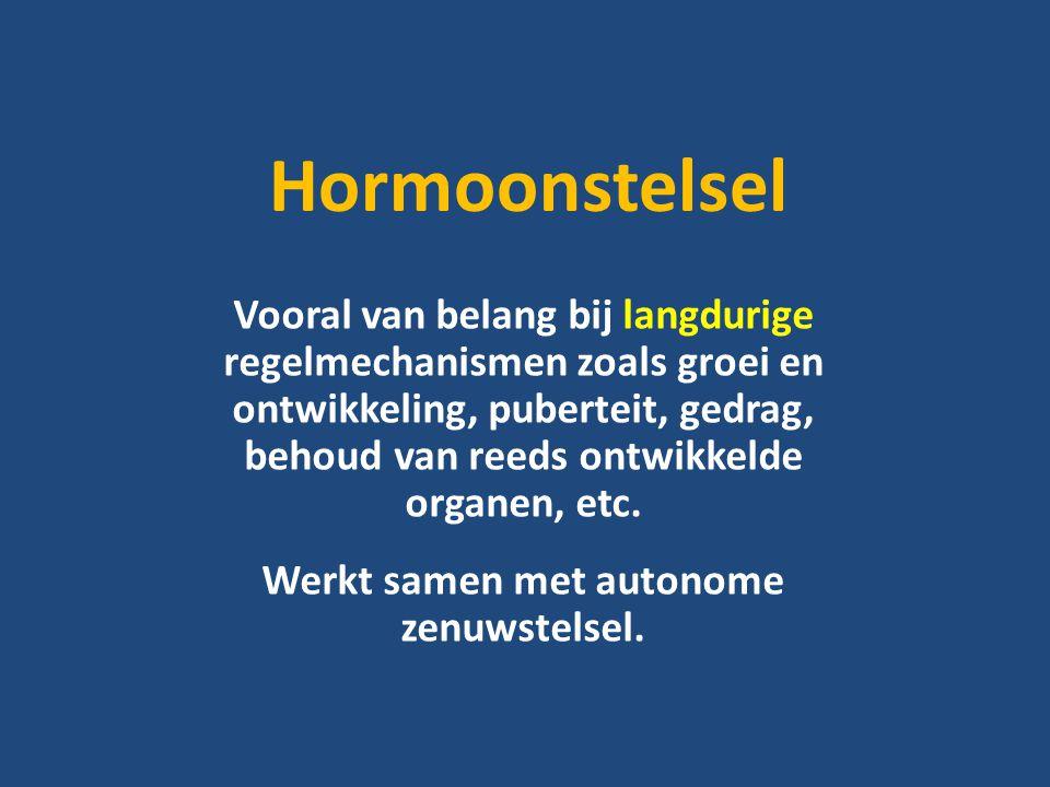 Hormoonstelsel Vooral van belang bij langdurige regelmechanismen zoals groei en ontwikkeling, puberteit, gedrag, behoud van reeds ontwikkelde organen, etc.