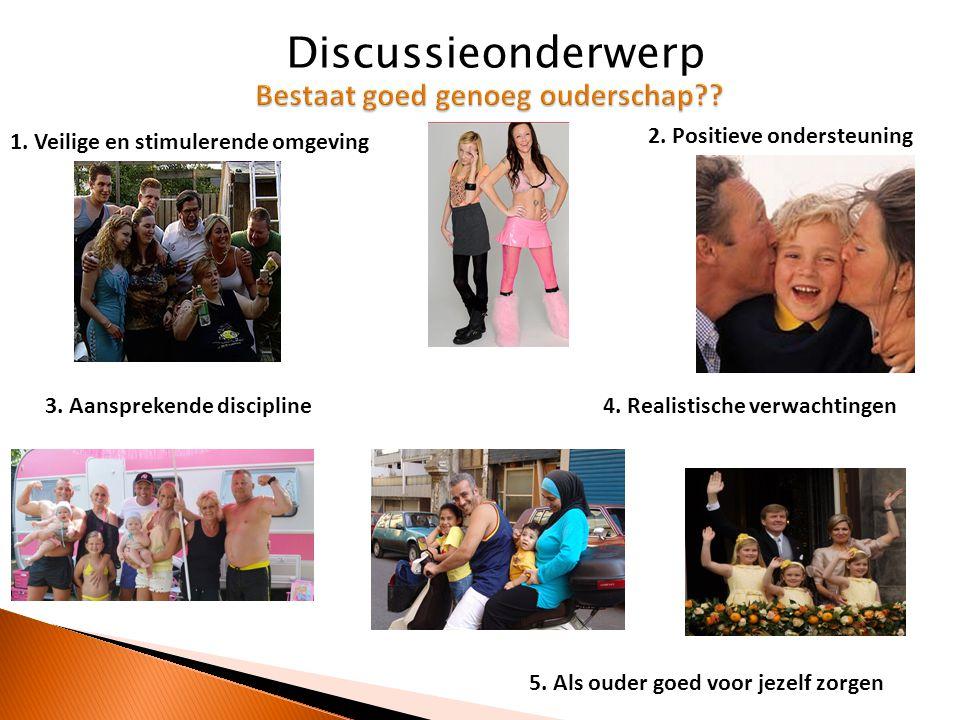 1. Veilige en stimulerende omgeving 2. Positieve ondersteuning 3. Aansprekende discipline4. Realistische verwachtingen 5. Als ouder goed voor jezelf z