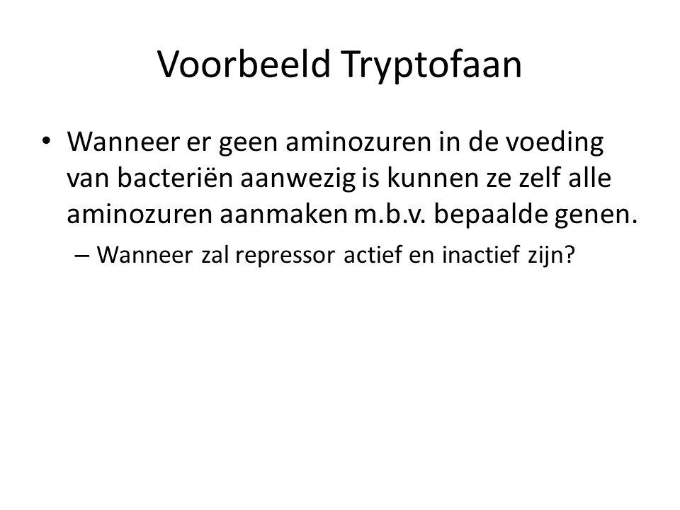 Voorbeeld Tryptofaan Wanneer er geen aminozuren in de voeding van bacteriën aanwezig is kunnen ze zelf alle aminozuren aanmaken m.b.v. bepaalde genen.